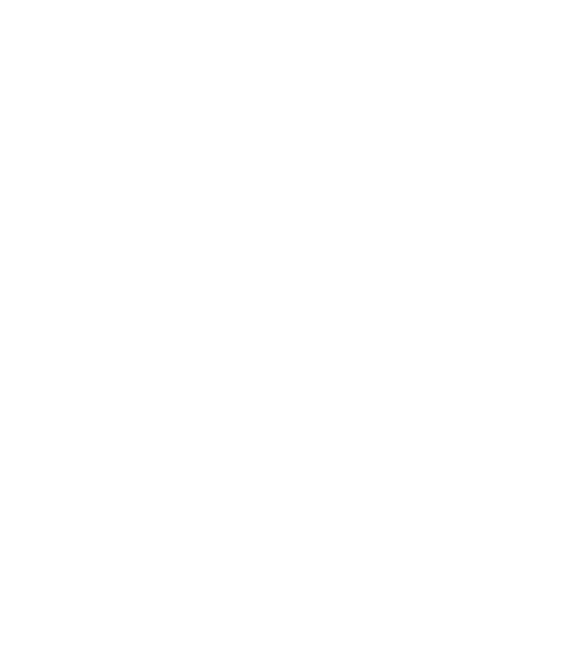Matcha and Beyond matcha tin